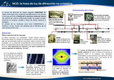 IM-BL11-NCD